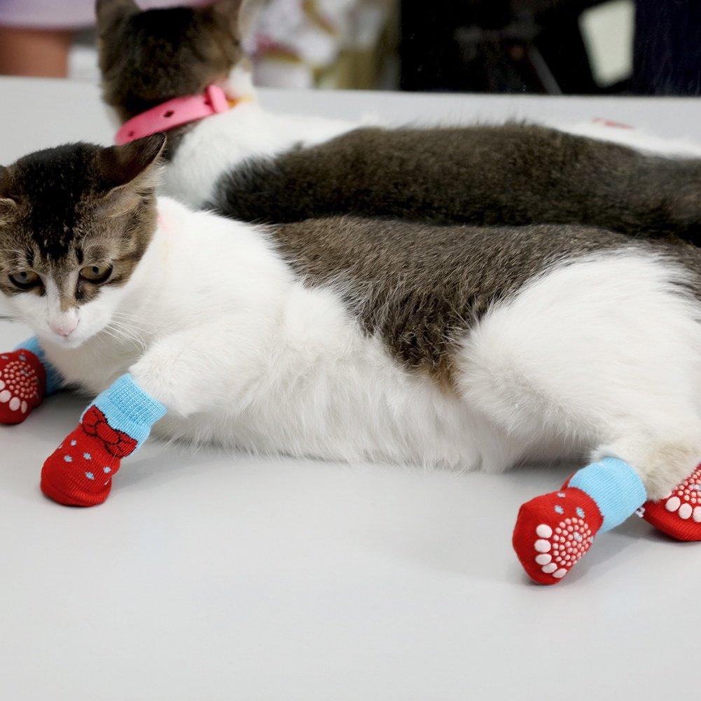 calcetines para gatos